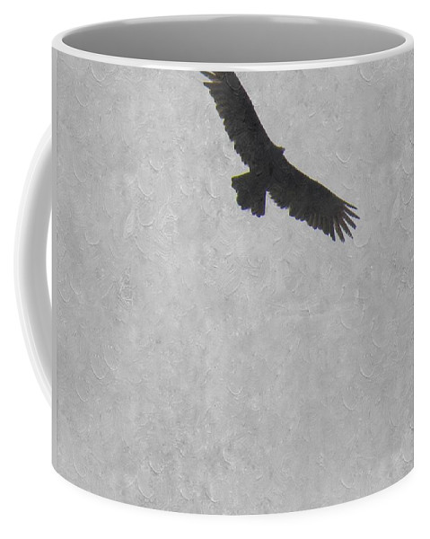 Buzzard Coffee Mug featuring the photograph Flight Of The Buzzard by Annie Adkins
