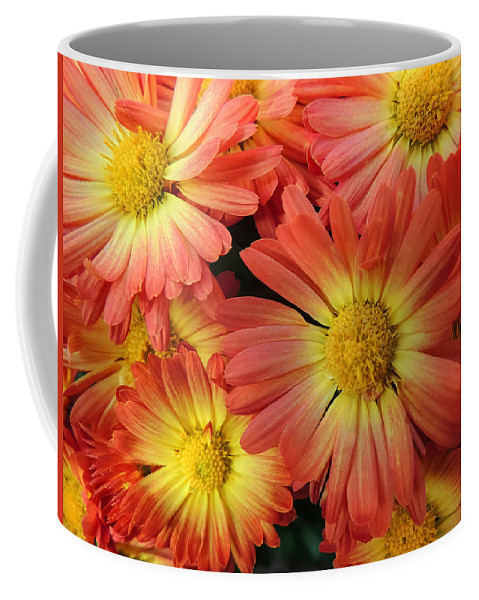 Flower Coffee Mug featuring the photograph Floral Frenzy 2 by Robert Mitchell