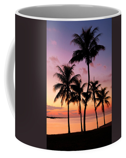 Sunset Coffee Mug featuring the photograph Florida Breeze by Chad Dutson
