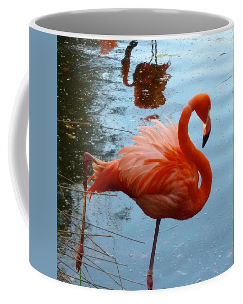 Flamingo Coffee Mug featuring the photograph Florida Flamingo by Richard Bryce and Family