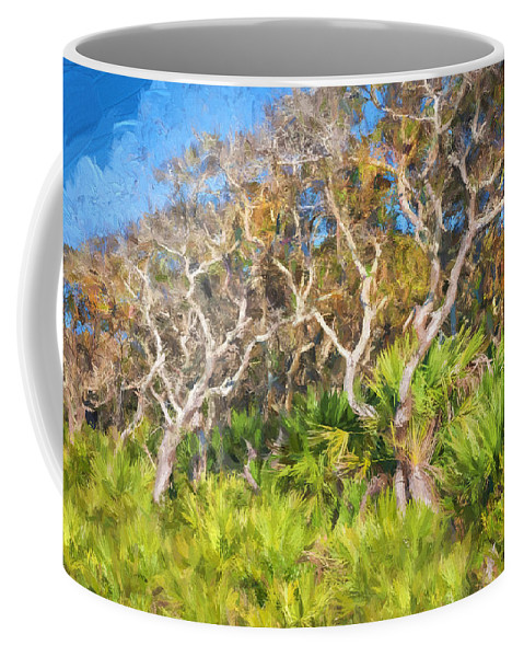 Washington Oaks Gardens State Park Coffee Mug featuring the photograph Florida Scrub Oaks Painted by Rich Franco
