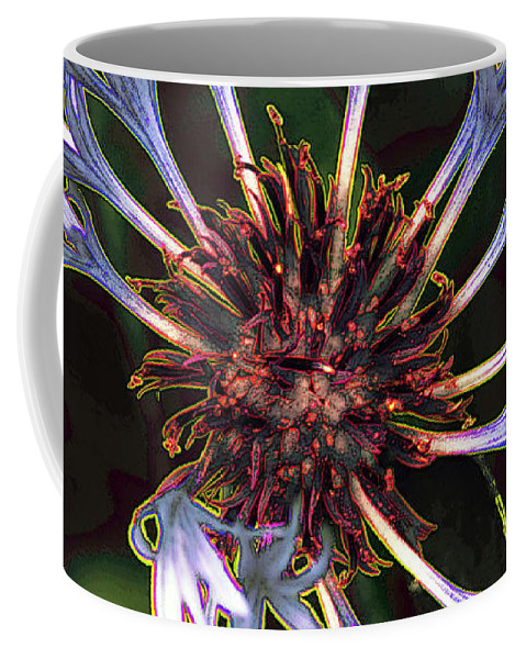 Flower Coffee Mug featuring the photograph 10415 Cornflower by Colin Hunt
