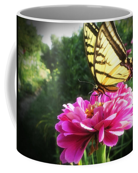 Butterfly Coffee Mug featuring the photograph Flower And Butterfly by Nicola Nobile