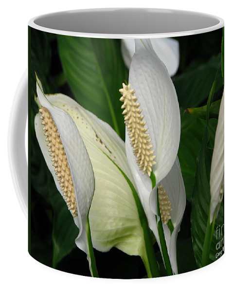 Art For The Wall...patzer Photography Coffee Mug featuring the photograph Flower Art by Greg Patzer
