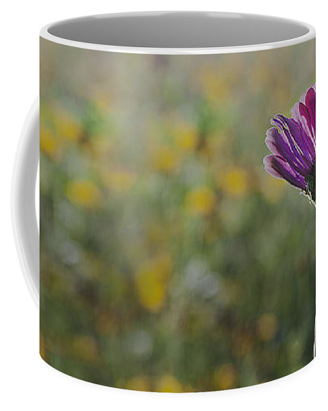 2011 Coffee Mug featuring the photograph Flower In A Field by Larry Braun