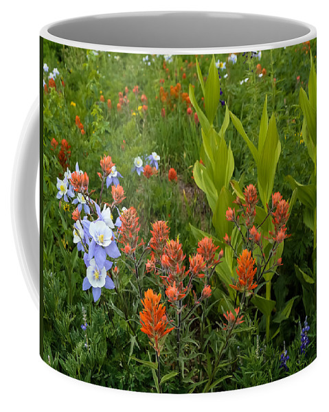 Flower Coffee Mug featuring the photograph Flower Mosaic by Kevin Buffington