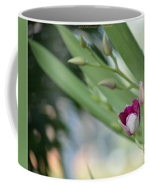 Pink Love Coffee Mug featuring the photograph Flowering Orchid Stem by Sonali Gangane