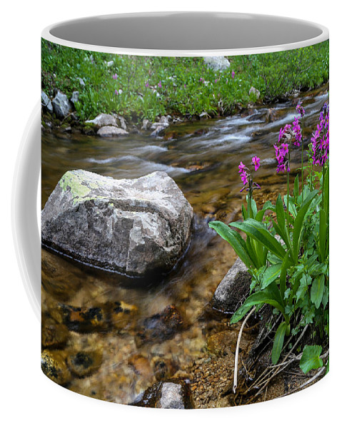 Stream Coffee Mug featuring the photograph Flowers And Stream by Kevin Buffington
