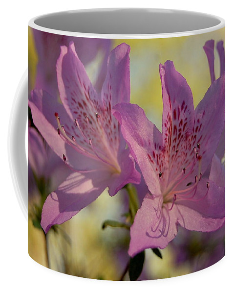 Flowers Coffee Mug featuring the photograph Flowers In Bloom by James DeFazio