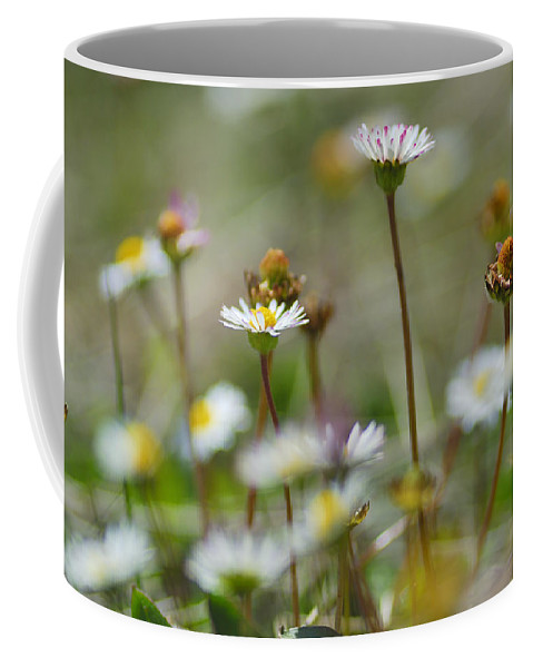 Flower Coffee Mug featuring the photograph Flowers In The Hight Mountains. by Guido Montanes Castillo