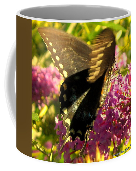 Butterfly Coffee Mug featuring the photograph Fluid Beauty by Tami Quigley