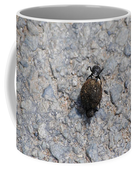 Fly Coffee Mug featuring the photograph Fly by FL collection