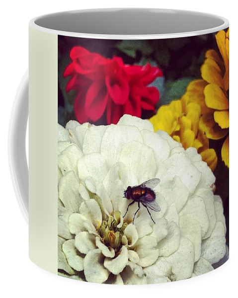 Fly Coffee Mug featuring the photograph Fly by Katie Cupcakes