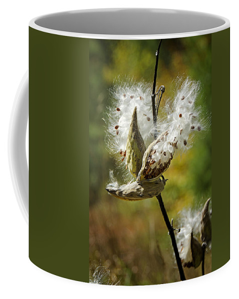Milkweeds Coffee Mug featuring the photograph Fly Me Away by Donna Doherty