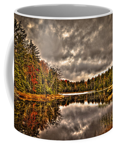 Adirondack's Coffee Mug featuring the photograph Fly Pond Marsh II by David Patterson