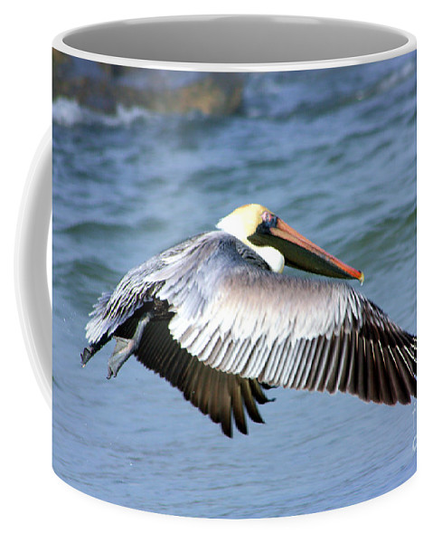 Birds Coffee Mug featuring the photograph Flying Florida Pelican by Nick Gustafson