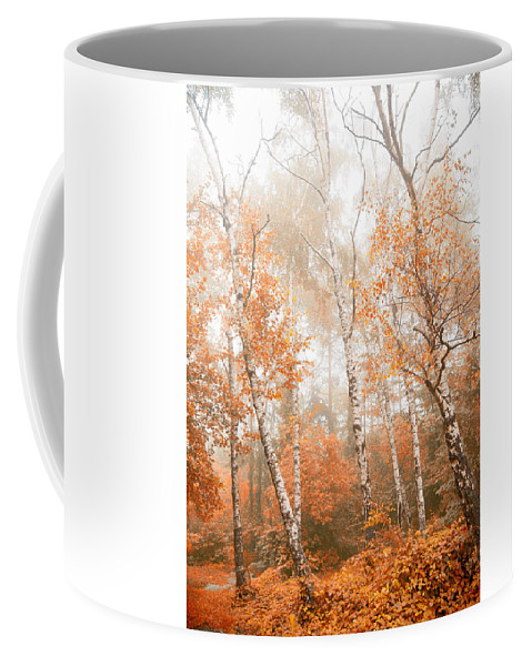Wilderness Coffee Mug featuring the photograph Foggy Autumn Aspens by Eti Reid