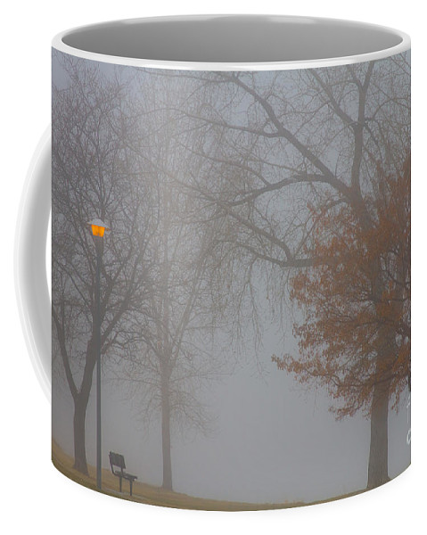Fog Coffee Mug featuring the photograph Foggy Lake View by James BO Insogna