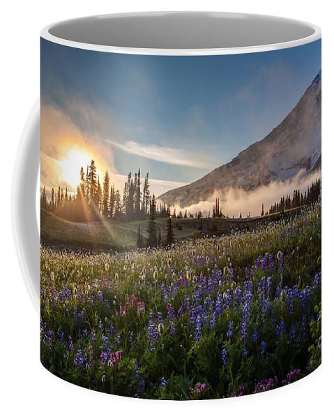 Rainier Coffee Mug featuring the photograph Foggy Rainier Sunset by Mike Reid
