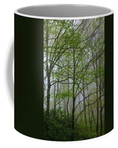 Don Keisling Coffee Mug featuring the photograph Foggy Woods by Don Keisling