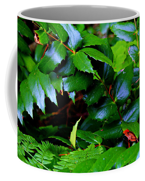 Oregon Coffee Mug featuring the photograph Foliage N Such by Jeanette C Landstrom