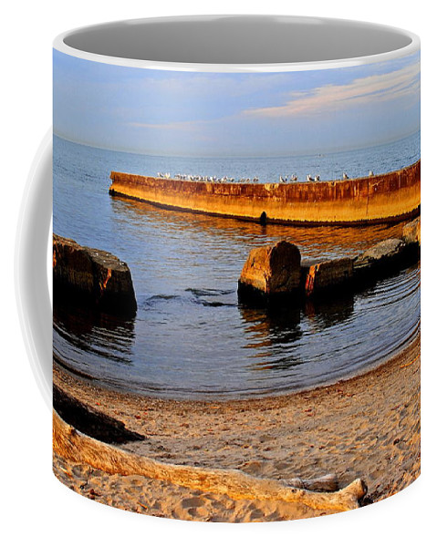 Birds Coffee Mug featuring the photograph For The Birds by Frozen in Time Fine Art Photography