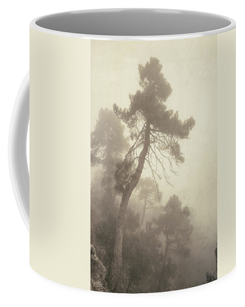 Retro Coffee Mug featuring the photograph Forest Fairy by Guido Montanes Castillo