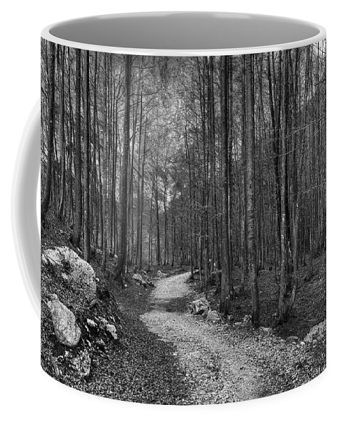 Autumn Coffee Mug featuring the photograph Forest Trail Bw by Ivan Slosar