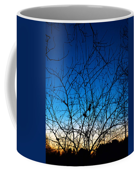 Tree Coffee Mug featuring the photograph Fractured Sunset by Gary Mosman