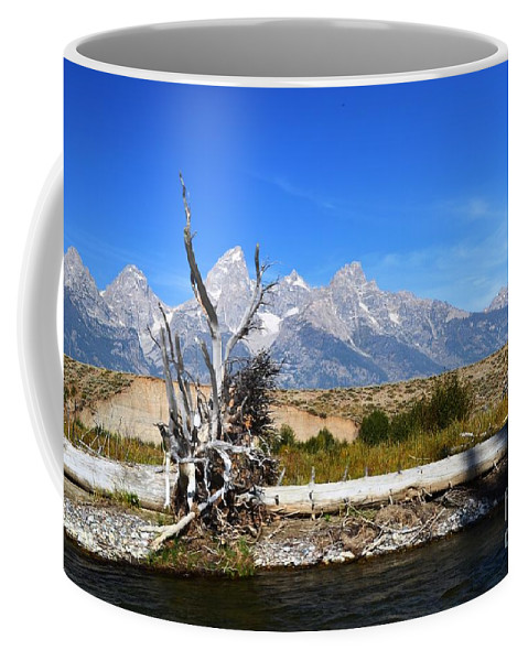 Grand Tetons Coffee Mug featuring the photograph Framing The Grand by Deanna Cagle