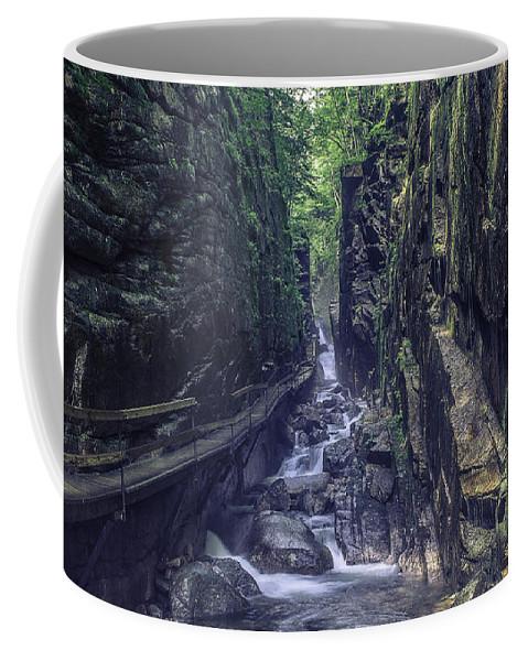 Franconia Notch State Park Coffee Mug featuring the photograph Franconia Notch by Billy Bateman