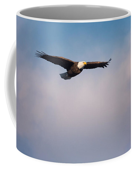 Eagle Coffee Mug featuring the photograph Freedom Flier by Bill Wakeley