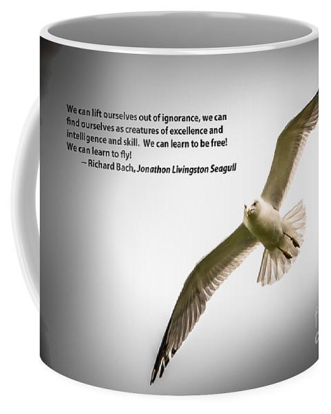 Jonathon Livingston Seagull Coffee Mug featuring the photograph Freedom by Grace Grogan