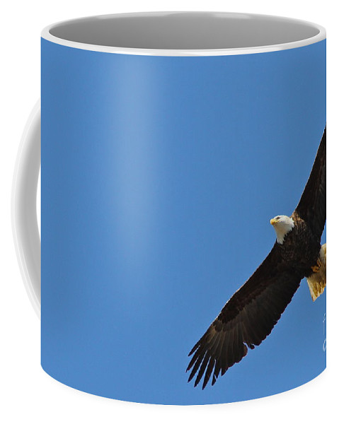 Eagle Coffee Mug featuring the photograph Freedom by Rick Monyahan