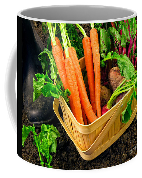 Produce Coffee Mug featuring the photograph Fresh Picked Healthy Garden Vegetables by Edward Fielding