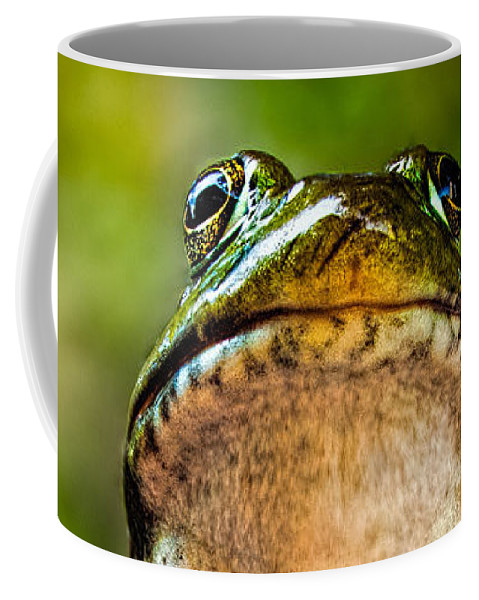 Frog Coffee Mug featuring the photograph Frog Prince Or So He Thinks by Bob Orsillo
