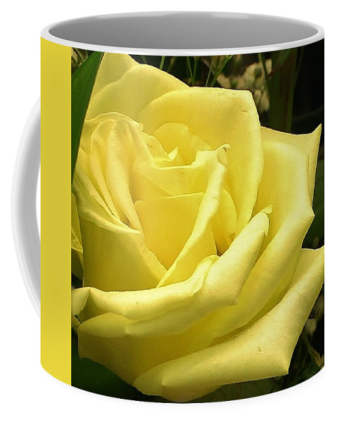 Flora Coffee Mug featuring the photograph From One Friend To Another by Bruce Bley