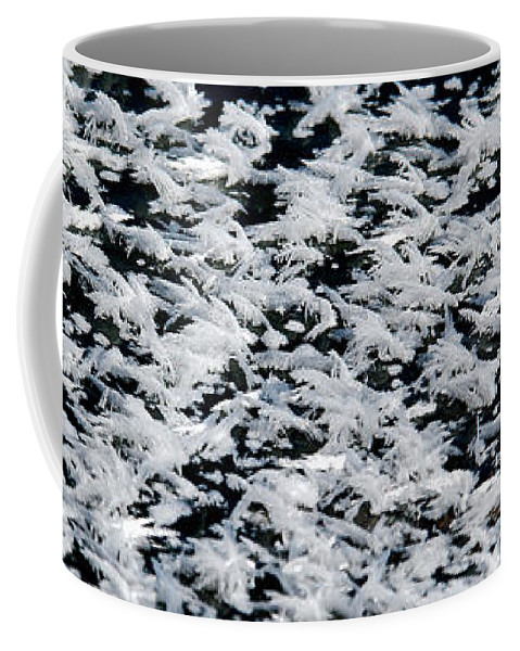 Frost Coffee Mug featuring the photograph Frost Flakes On Ice - 06 by Larry Jost