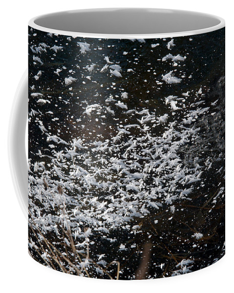 Frost Coffee Mug featuring the photograph Frost Flakes On Ice - 30 by Larry Jost