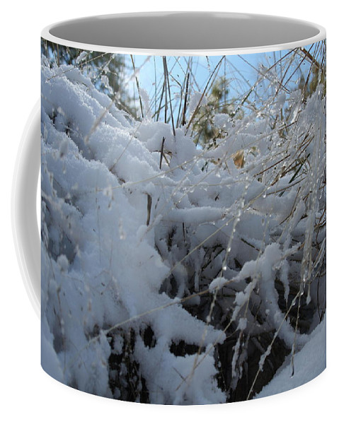 Snow Coffee Mug featuring the photograph Frost Grass by David S Reynolds