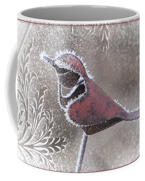 Cardinal Coffee Mug featuring the photograph Frosty Cardinal by Patti Deters