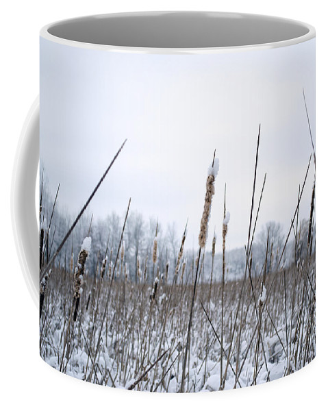 Cattails Coffee Mug featuring the photograph Frosty Cattails by Jim Shackett