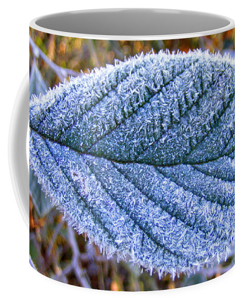Plants Coffee Mug featuring the photograph Frosty Leaf by Duane McCullough