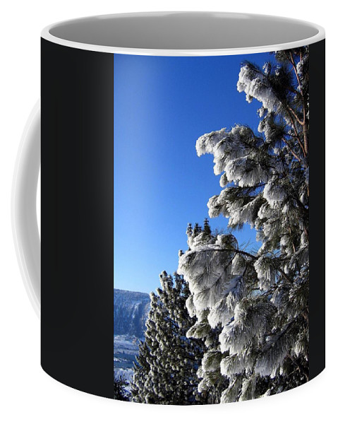Frost Coffee Mug featuring the photograph Frosty Limbs by Will Borden