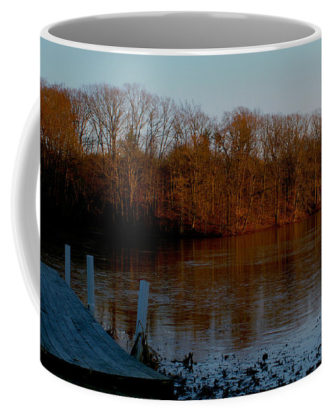 Frozen Coffee Mug featuring the photograph Frozen Reflection by Pablo Rosales
