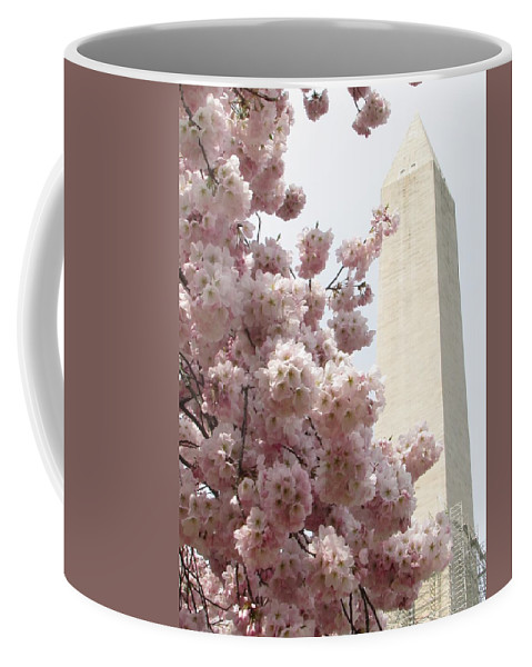 Cherry Coffee Mug featuring the photograph Full Bloom In Dc by Jennifer Wheatley Wolf