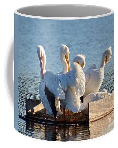 Pelican Coffee Mug featuring the photograph Full House by Carol Bradley