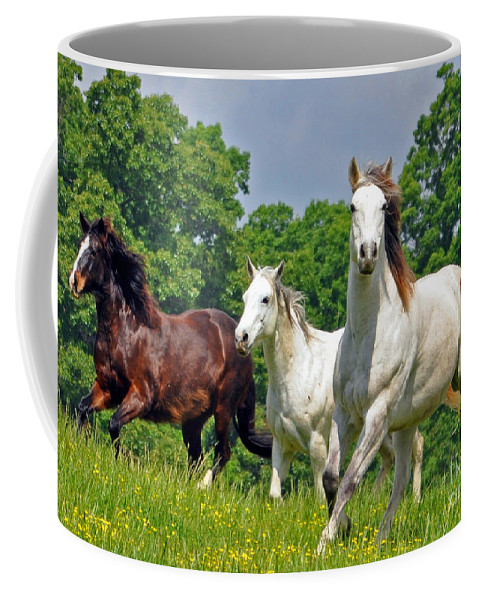 Horses Coffee Mug featuring the photograph Fun Run Up Close by Lydia Holly