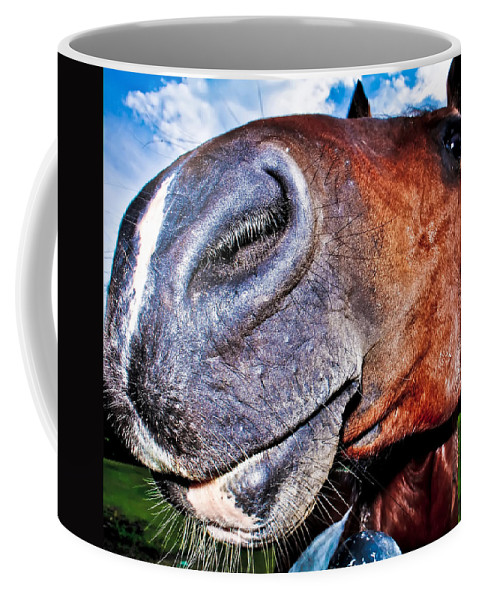 Animal Coffee Mug featuring the photograph Funny Horse by Alex Grichenko