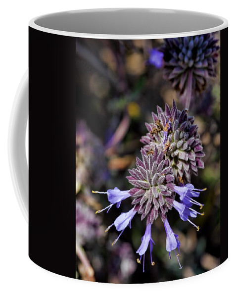 Salvia Apiana Coffee Mug featuring the photograph Fuzzy Purple 1 by Kelley King